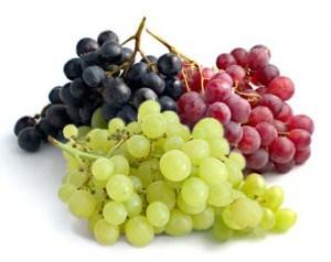 Hasil gambar untuk anggur